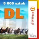 5000 szt., Ulotki DL