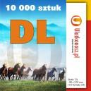 10 000 szt., Ulotki DL