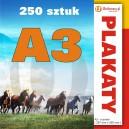 250 szt., Plakaty A3