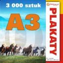 3000 szt., Plakaty A3