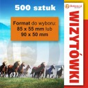 500 szt., Wizytówki tradycyjne