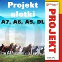 Projekt ulotki - A7, A6, A5, DL