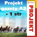 Projekt gazety A3 - 1 str