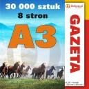 Gazeta A3 - 8 stron - 30 000 sztuk